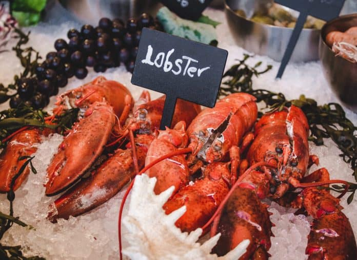 Red Lobster | Sourcing, Cooking, Recipes & Nutrition – Webnews21