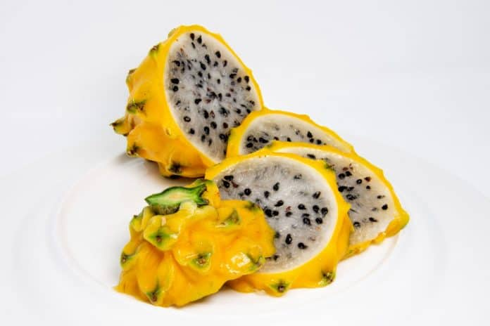Yellow Dragon Fruit Advantages – Webnews21