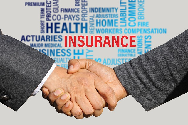 What is an insuranceGuarantorvs. Subscriber?