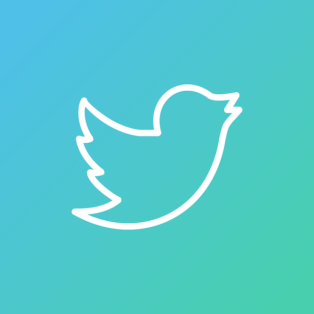 How does the Twitter algorithm work in 2021-22?